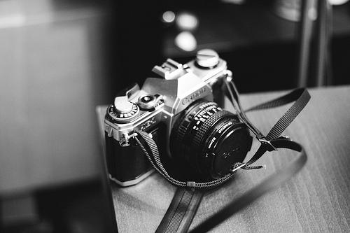 best camera for steadicam